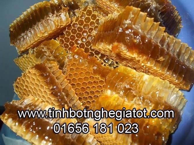 mat-ong-rung-nguyen-sap